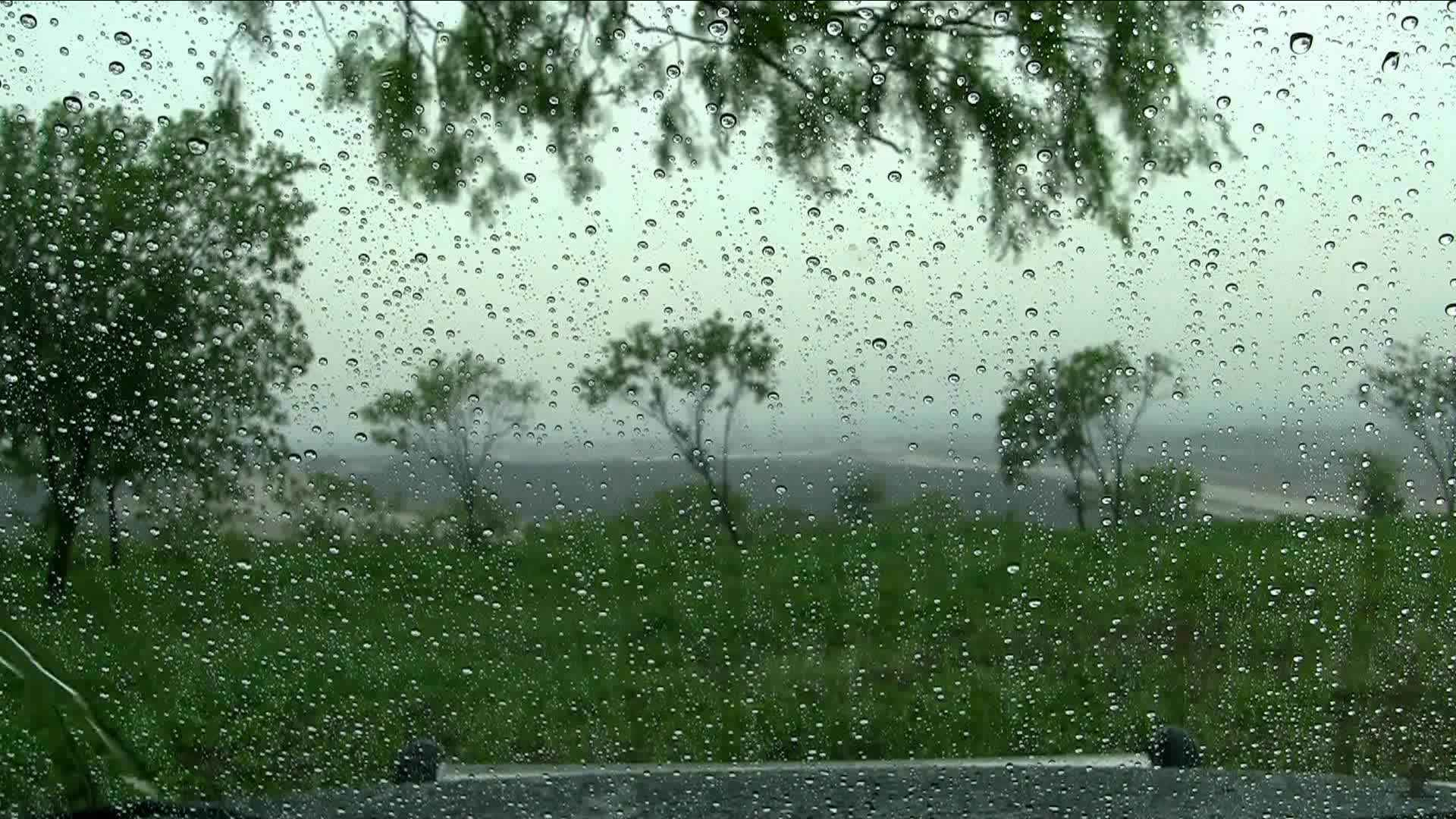Water drops on the window during the rain - Free Live ...